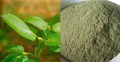 Sumatra White Vein Fine Powder